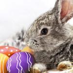 14 des traditions de Pâques les plus attrayantes du monde