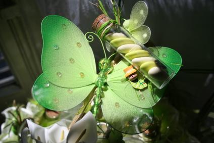 Décoration et dragées pour un baptême thème Papillon