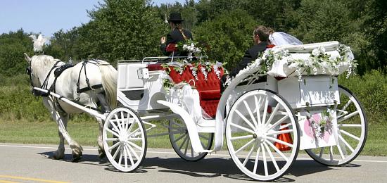pour un mariage - Location Carrosse Mariage