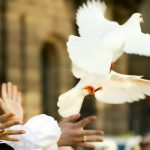 colombes symbole mariage