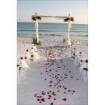 Les avantages et les inconvénients de faire un mariage à la plage